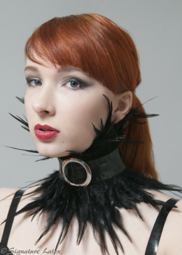Latex and Feather choker